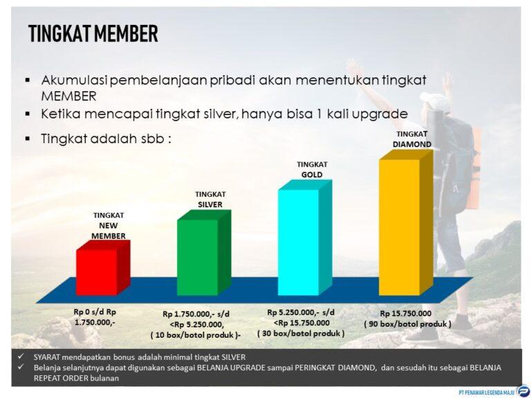 3. Tingkatan Member Bisnis PLM
